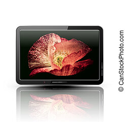 Vector lcd, plasma tv with beautif