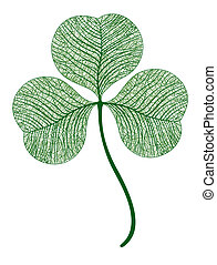 Vector leaf clover isolated. Macro illustration.