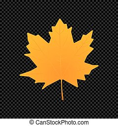 Vector leaf isolated on dark transparent background