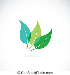 Vector leaves icon on white background
