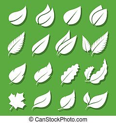 Vector leaves white icon set on green background