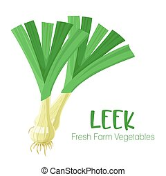 Vector leek isolated on white background.Vegetable illustration for farm market menu. Healthy food design poster. Cartoon style vector illustration