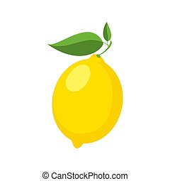 Vector lemon is isolated on a white background.