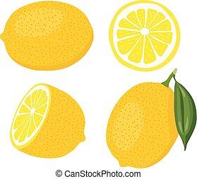 vector lemon set i