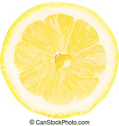 Vector lemon slice. Filled with solid colors only.