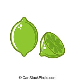 Vector lime illustration isolated on white