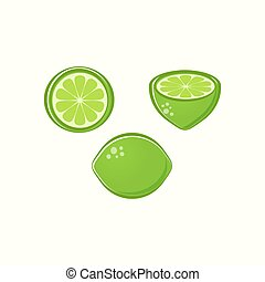 Vector lime illustrations - Beautiful vector lime...