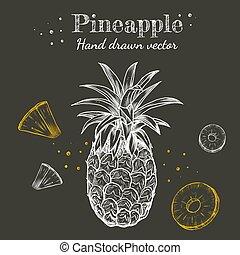 Vector line art pineapple fruits chalk hand drawn on chalkboard background illustration set.