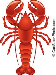 Vector lobster illustration