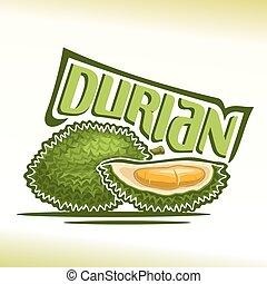 Vector logo Durian Fruit