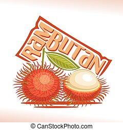 Vector logo Rambutan Fruit
