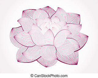 Vector lotus flower isolated on white, line drawing