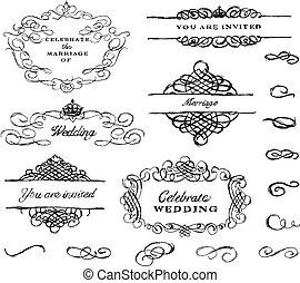 vector, mano, dibujado, ornamento, conjunto
