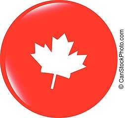 vector maple leaf icon glassy web button