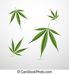 Vector Medical Cannabis Leaves Isolated on White Background