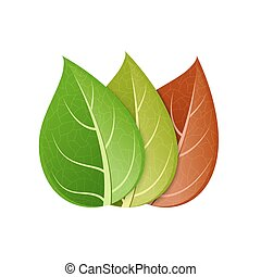 vector modern colorful leaf set on white