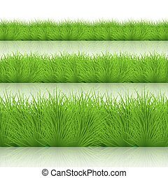 Vector modern green grass set