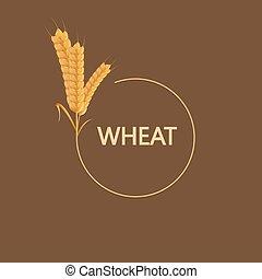 Vector modern wheat background