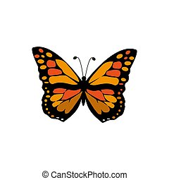 Vector Monarch Butterfly Illustration Isolated On White Background - Vector