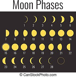 Vector moon phases, flat design