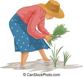 vector, mujer, trabajando, farm.