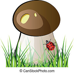 Vector mushroom boletus with green grass and ladybug. Isolation over white background.