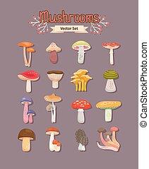 Vector mushrooms set - Set of painted different mushrooms...