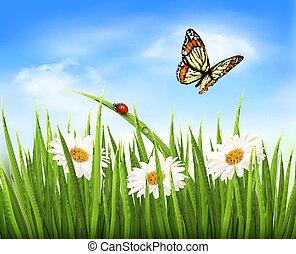vector., natura, erba, sfondo verde, fiori, butterfly.