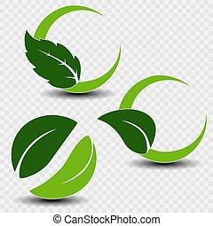 Vector natural symbols with leaf on transparent background