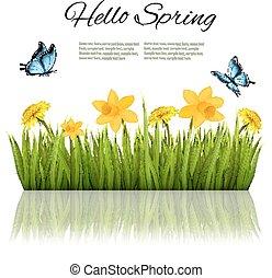 vector., natureza, capim, experiência verde, flores, butterfly.