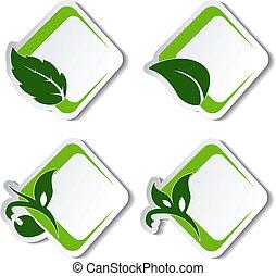 vector, natuurlijke , stickers, met, blad