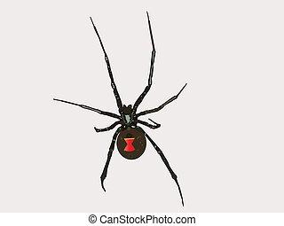 vector, negro, araña, viuda