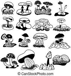 vector, negro, hongos