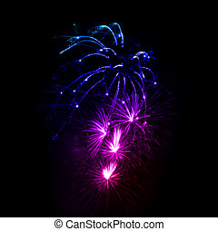 vector, noche, fuegos artificiales, sky.