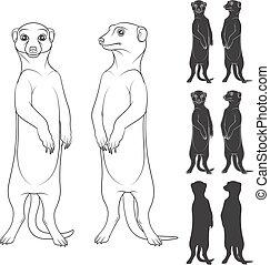 vector, objects., meerkats., aislado, negro, blanco, conjunto, ilustraciones, retratar