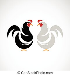 Vector of a chicken design on white background.