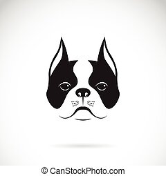 Vector of a dog face on a white background. Bulldog