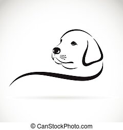 Vector of a dog labrador head on a white background.
