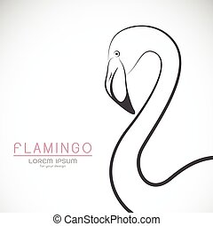 Vector of a flamingo design on white background, Wild Animals.