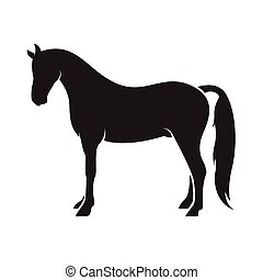 Vector of a horse isolated on white background. Animal.