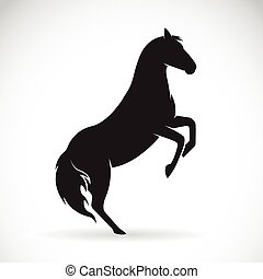 Vector of a horse on a white background