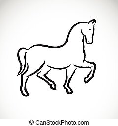 Vector of a horse on white background.