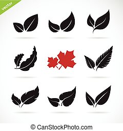 Vector of a leaves icon set on white background.