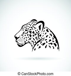 Vector of a leopard on white background. Wild Animals.