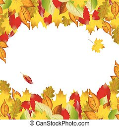 Vector of autumn  colorful leaves. Fall background.