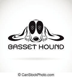 Vector of basset hound dog on a white background. Pet Animals