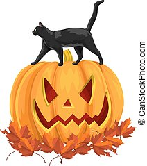 Vector of black cat on pumpkin with autumn leaves.