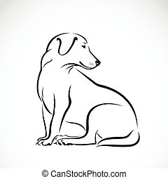Vector of dog labrador on white background