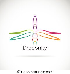 Vector of dragonfly on white background