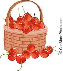 Vector of fresh cherries.